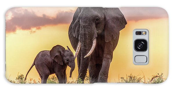 Elephants At Sunset Galaxy Case by Janis Knight