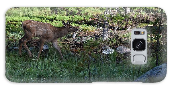 Baby Elk Rmnp Co Galaxy Case