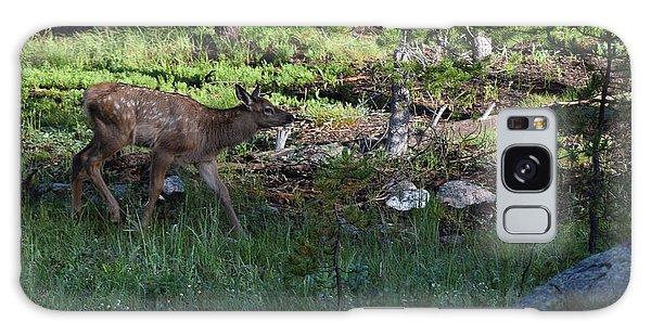 Baby Elk Rmnp Co Galaxy Case