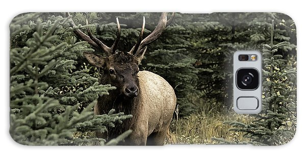 Elk Bull Galaxy Case