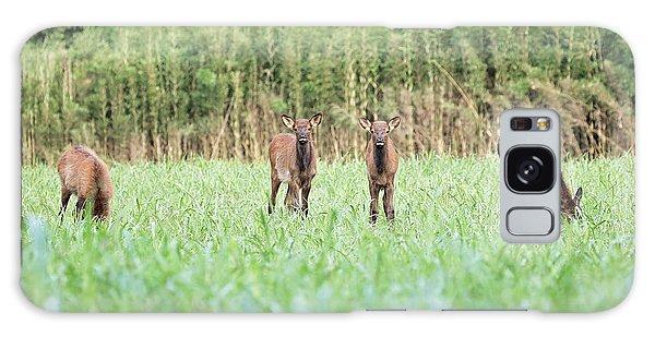 Elk Calves Galaxy Case