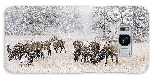 Elk In A Snow Storm - 1135 Galaxy Case