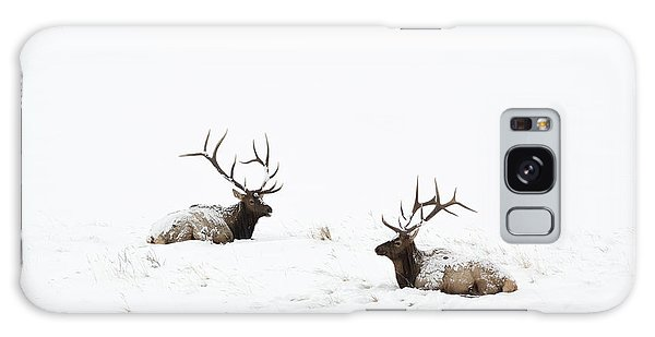 Elk Laying In A Snow Covered Meadow - 9069 Galaxy Case