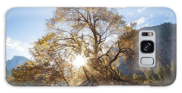 Elm Tree  Galaxy Case