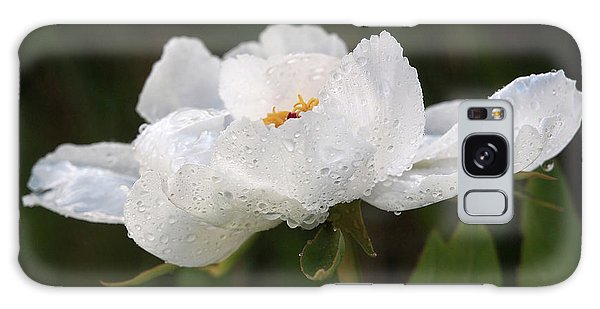 Embracing The Rain - White Tree Peony Galaxy Case by Gill Billington