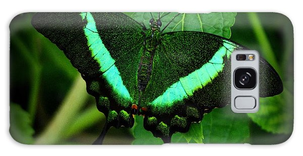 Emerald Swallowtail Galaxy Case