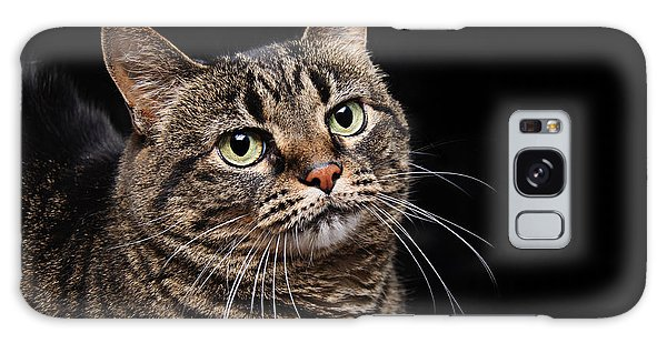 Emmy The Cat Ponder Galaxy Case