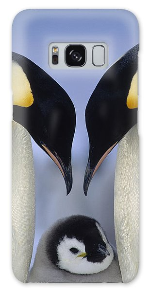Emperor Penguin Family Galaxy Case