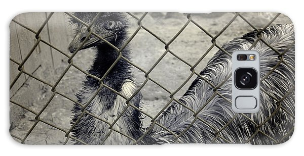 Emu At The Zoo Galaxy Case by Luke Moore