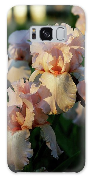 End Of Day Pink Irises 6702 H_2 Galaxy Case