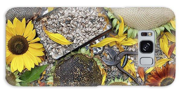 Helianthus Annuus Galaxy Case - End Of Season by Tim Gainey
