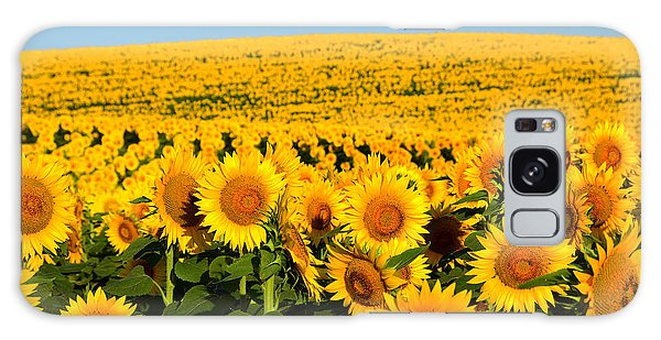 Endless Sunflowers Galaxy Case