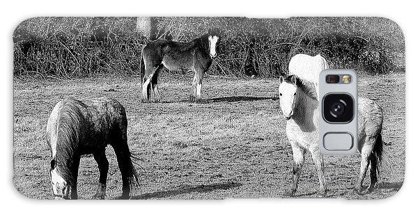 English Horses Galaxy Case