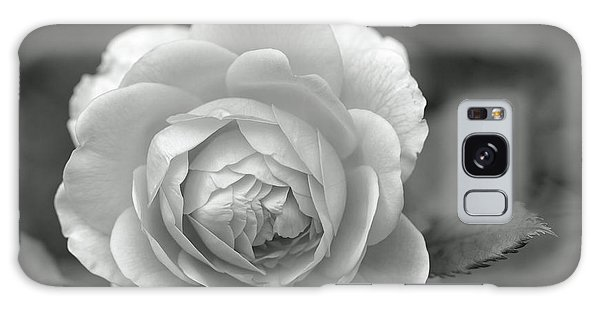 English Rose In Black And White Galaxy Case