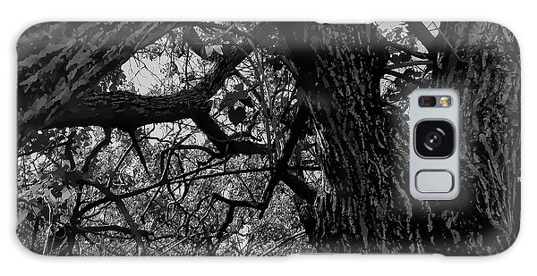 Enter The Woods In Black And White Galaxy Case