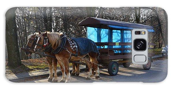 Equestrian Team Galaxy Case