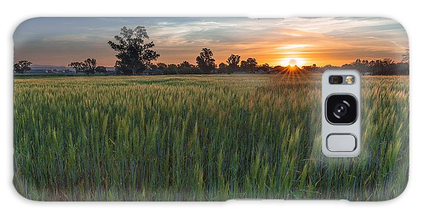 Equinox-first Sunrise Of Spring Galaxy Case by Tim Bryan