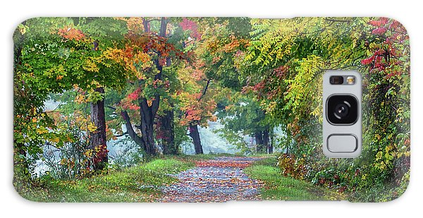 Erie Canal In Fall Galaxy Case