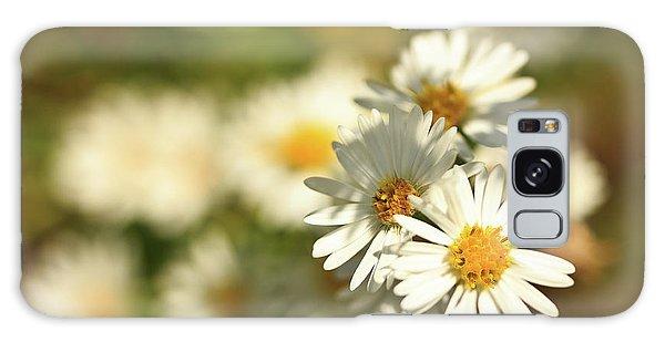 Erigeron Annuus Daisy Like Wildflower Galaxy Case