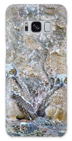 Estes Park Owls Galaxy Case