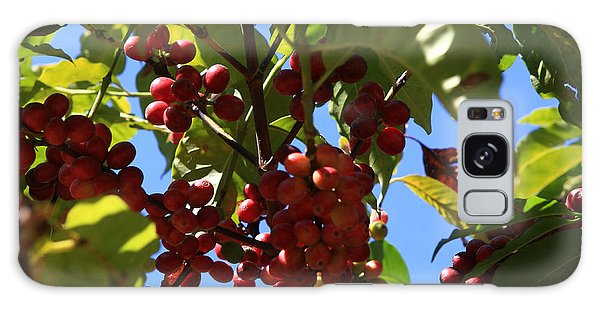 Ethiopian Coffee Beans Galaxy Case