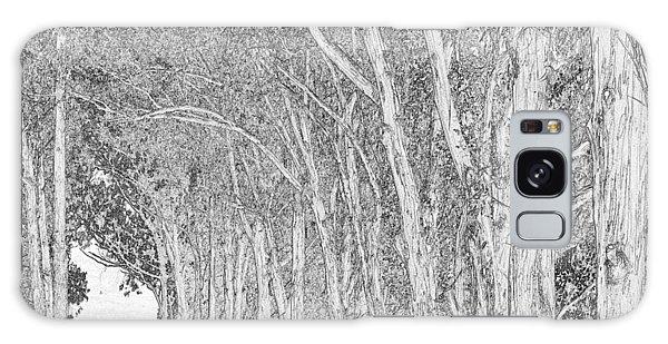 Galaxy Case - Eucalyptus Road by Bob Neiman