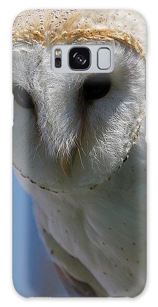 European Barn Owl Galaxy Case
