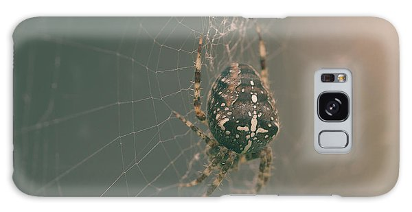 European Garden Spider B Galaxy Case
