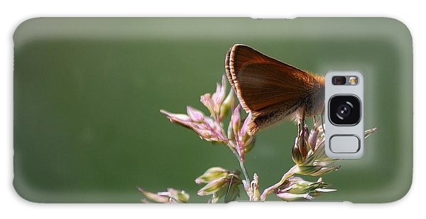European Skipper Galaxy Case by Randy Bodkins