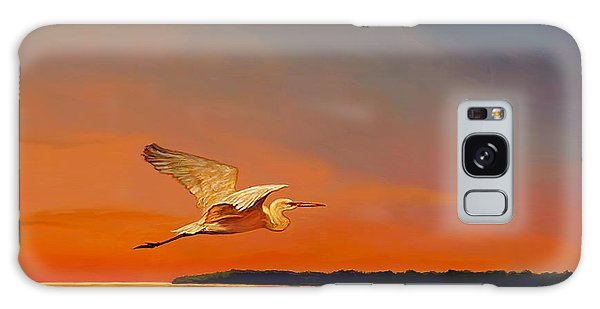 Evening Flight Galaxy Case