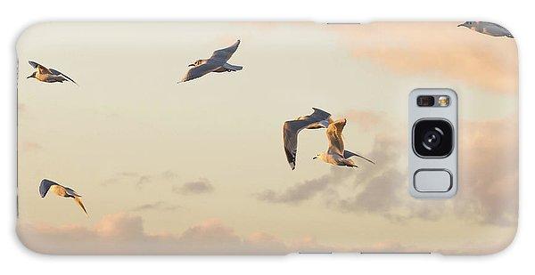Evening Gulls Galaxy Case