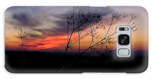 Evening Light Over Meadow Galaxy Case