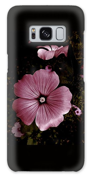 Evening Rose Mallow Galaxy Case by Danielle R T Haney