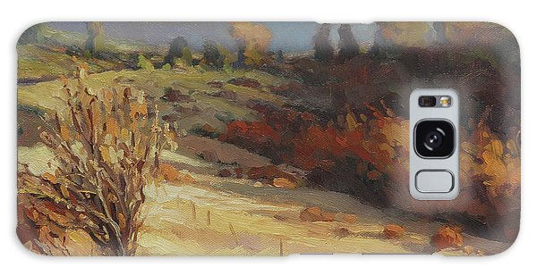 Evening Galaxy Case - Evening Shadows by Steve Henderson