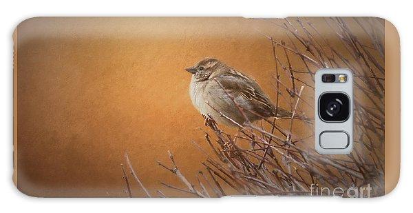 Evening Sparrow Song Galaxy Case