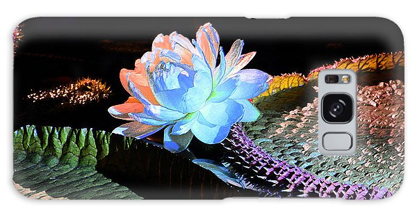 Evening Splendor Galaxy Case by Cindy Manero