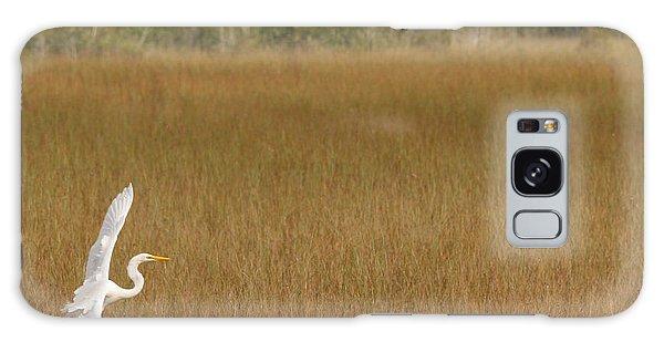 Everglades 429 Galaxy Case