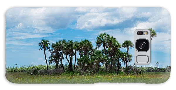 Everglades Landscape Galaxy Case by Christopher L Thomley