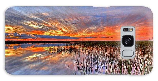Everglades Sunset Galaxy Case