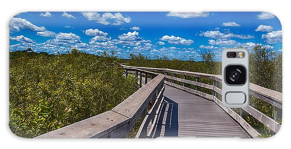 Everglades Trail Galaxy Case by Swank Photography