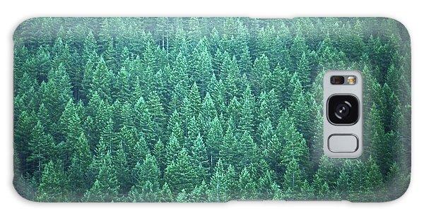 Evergreen Galaxy Case