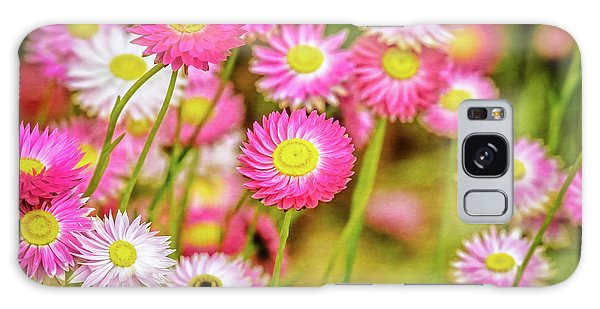 Everlasting Daisies, Kings Park Galaxy Case