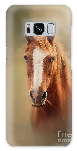Everyone's Favourite Pony Galaxy Case