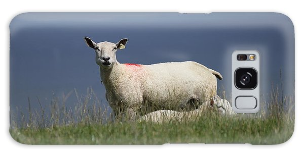 Ewe Guarding Lamb Galaxy Case
