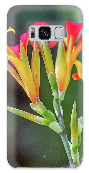 Exotic Flowers Galaxy Case