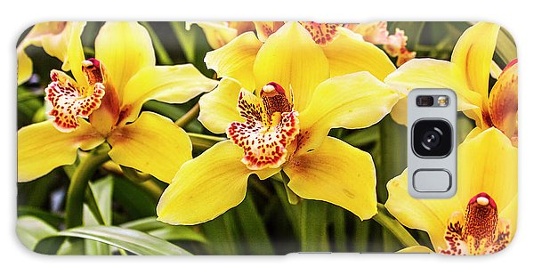 Shrub Galaxy Case - Exotic Orchids  by Jorgo Photography - Wall Art Gallery