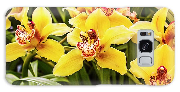 Orchid Galaxy Case - Exotic Orchids  by Jorgo Photography - Wall Art Gallery