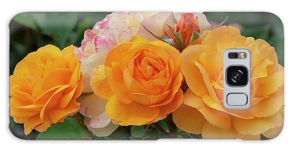 Experimental Roses 1 Galaxy Case