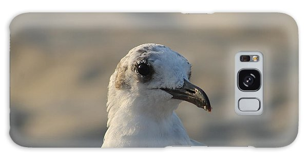 Eye Of The Gull Galaxy Case