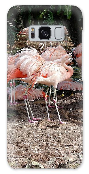 Fabulous Flamingos Galaxy Case